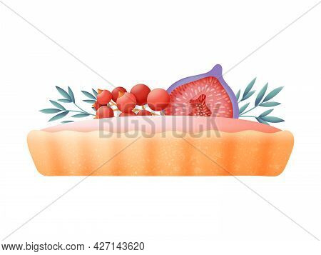 Sweet Tart With Berries And Fruits Vector Design With Pink Cream Decorated With Fresh Fig Fruit And