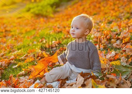 Kids Fashion. Childhood Memories. Child Autumn Leaves Background. Warm Moments Of Autumn. Toddler Bo
