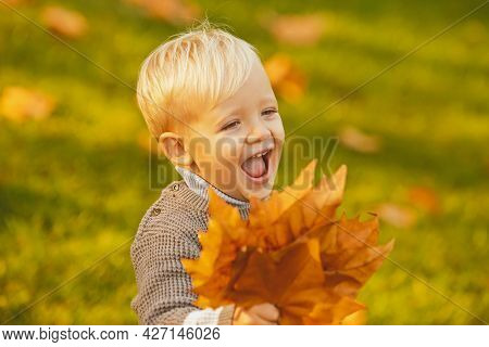 Excited Child Playing With Leaves In Autumn Park. Smiling Blonde Kid Hold Autumn Leafs In The Nature