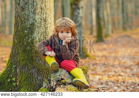 Cute Kid Sitting On Fallen Leaves. Child Walking Autumn Park.