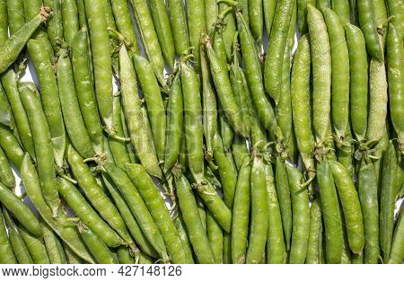 Organic Green Pea Pods Background In Horizontal Orientation