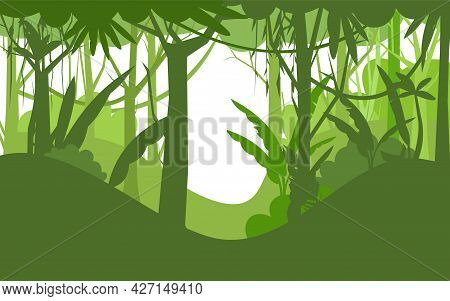 Jungle Illustration. Silhouette Isolated. Dense Wild-growing Tropical Plants With Tall, Branched Tru