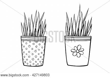 Flower Pots With Decorative Grass, Plant. Hand Drawn Simple Black Outline Vector Illustration In Car