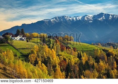 Amazing Autumn Rural Landscape And Colorful Birch Trees On The Slopes. Houses With Gardens On The Hi