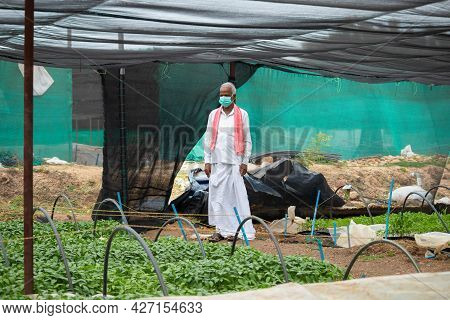 Farmer With Medical Face Mask Inside The Greenhouse Or Polyhouse After Coronavirus Or Covid-19 Pande