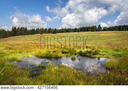 Peat-bog In Summer Landscape Under Blue Cloudy Sky - Ore Mountains, Czech Republic, Europe