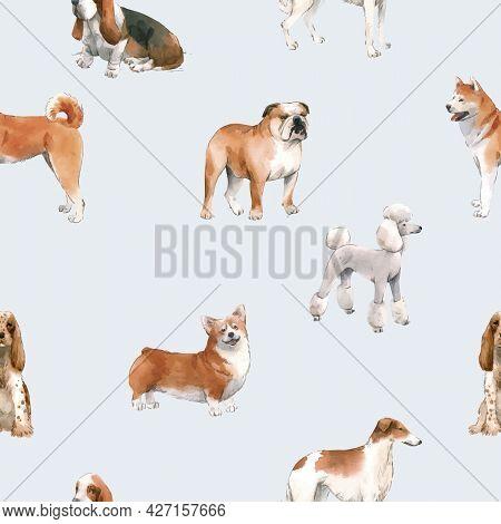 Beautiful Vector Seamless Pattern With Cute Watercolor Hand Drawn Dog Breeds Cocker Spaniel Greyhoun