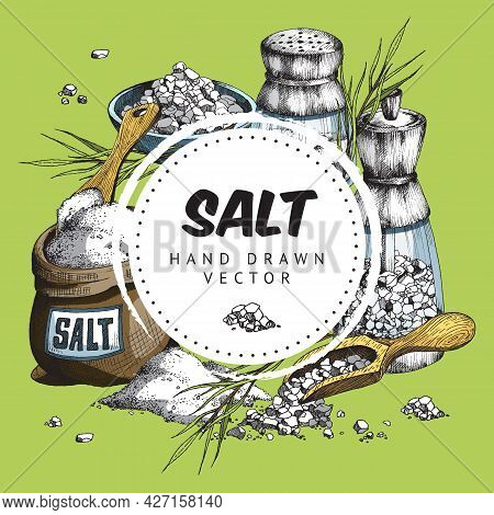 Color Vector Hand Rawn Illustration Of Round Label With Text Salt And Salt Objects On Green Backgrou