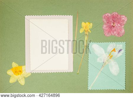 Page From An Old Photo Album. Scrapbooking Element Decorated With Leaves, Flowers And Petals Flowers