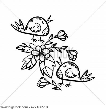 Coloring Pages For Older Children. Drawings Of Birds And Flowers. A Vector Illustration Drawn By Han