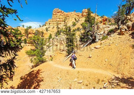 Red Canyon Arches trail in Losee Canyon. USA. The most popular trails in Red Canyon. Woman with photographic equipment on the canyon trail