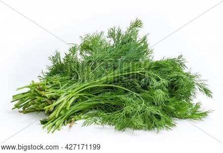 Bunch Of The Fresh Young Dill Stems On A White Background