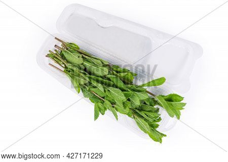 Fresh Spearmint Stems In An Open Transparent Plastic Container On A White Background, Top View
