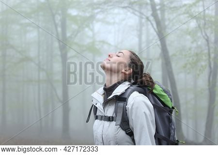 Side View Portrait Of A Trekker Breathing Fresh Air In Nature A Foggy Day