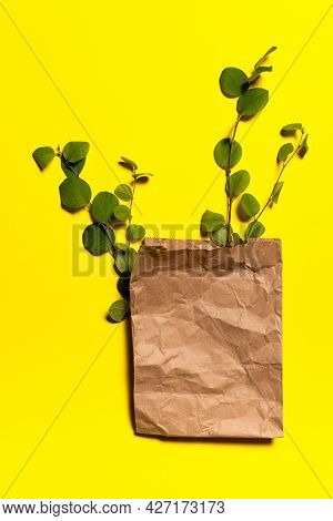 Crumpled Brown Shopping Bag Made Of Recycled Paper With Few Green Tree Branches On Yellow Paper Back