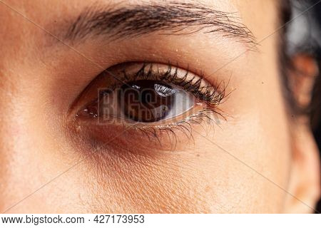 Close Up Of Feminine Eye With Eyelashes And Eyebrows Sight Details. Camera Focus On Natural Human Op