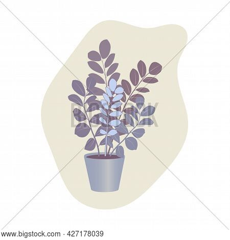 Indoor Plant Zamioculcas In A Pot For Interior Decor At Home, Office. Vector Illustration. Trendy Ho
