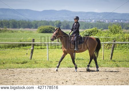 The Girl In Black Rides A Sorrel Horse In Riding School