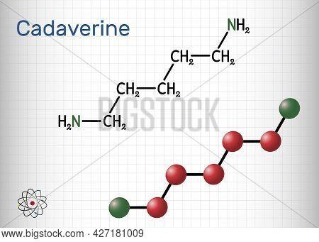 Cadaverine, Pentamethylenediamine Molecule. It Is Foul-smelling Diamine Formed By Bacterial Decarbox