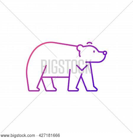 Formosan Bear Gradient Linear Vector Icon. White-throated Taiwanesse Mammal. Asiatic Wildlife Repres