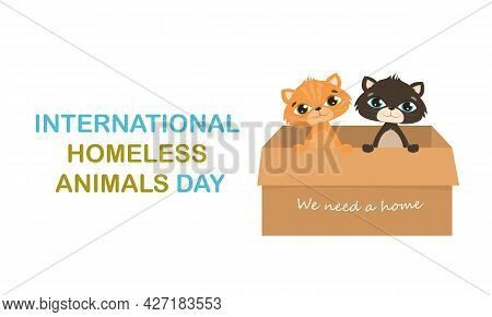Modern Colorful Horizontal Banner Template. International Day Of Homeless Animals. Two Cute Cats In