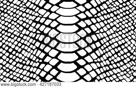 Trendy Snake Skin Vector Seamless Pattern. Hand Drawn Wild Animal Skin, Black And White Repeat Repti