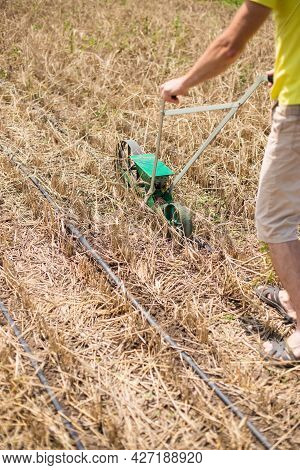 Man Seeding Seeds With Seeder During Summer In A Drought Period.