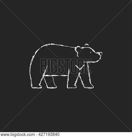 Formosan Bear Chalk White Icon On Dark Background. White-throated Taiwanesse Mammal. Asiatic Wildlif