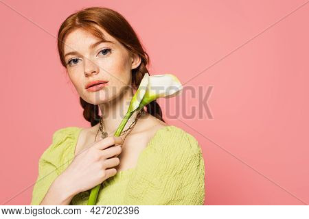 Freckled Woman With Calla Lily Looking At Camera Isolated On Pink