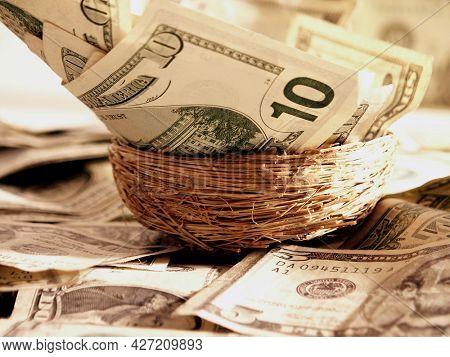 Ten dollar bills inside nest. 3D rendering.