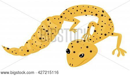 Eublepharis Macularius. Cartoon Yellow Golden Leopard Gecko. Reptile Vector Illustration Isolated On