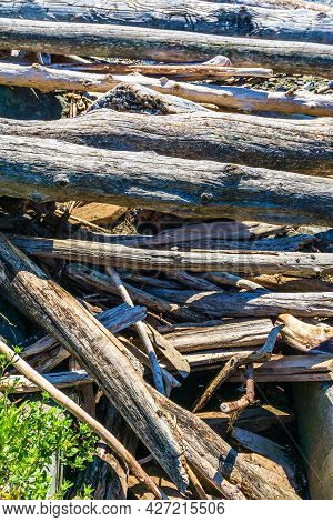A Pile Of Driftwood Along The Shoreline In West Seattle, Washington.