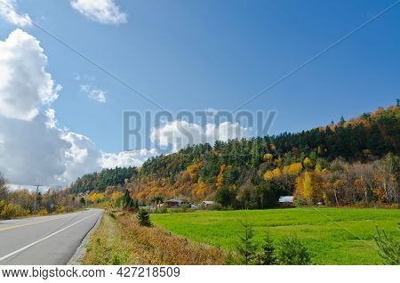 Forest Road In Fall Time, Quebec, Canada