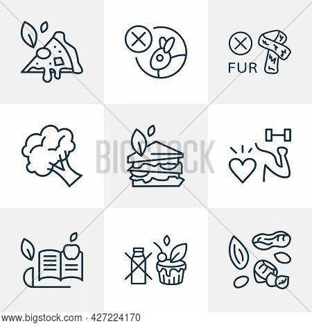 Vegan Icons Line Style Set With Non-dairy Dresser, No Tested On Animals, Vegan Sandwich Vegan Cake E