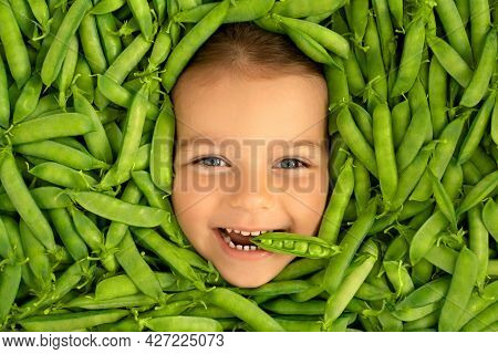 The Face Of A Cute Funny Child, Surrounded By Green Pods Of Fresh Ripe Peas. Healthy Proper Nutritio