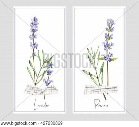Two Vertical Banners With Lavender And Tape