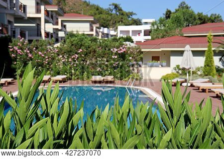 View Through The Oleander  Leaves On The Swimming Pool, Deck Chairs And Villa Houses. Vacation On Su