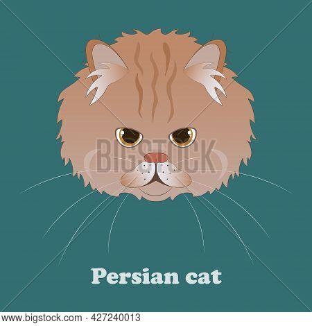 Print With Fluffy Cartoon Persian Cat. Vector