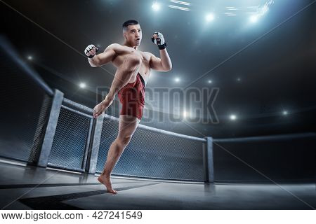 Knee Kick. Mma Cage. Male Fighter With A Knee Kick. Sport. Mma Fighter In The Octagon. 3d