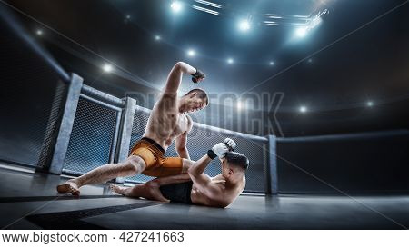 Mma Cage. Two Fighters Are Fighting. Punches. Sport Action Concept. Emotions Of Winner. Octagon. 3d