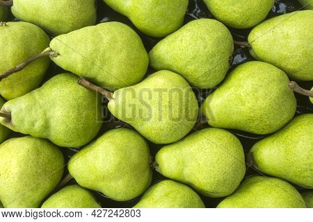 Delicious Pears In The Traditional Colombian Market - Pyrus Communis