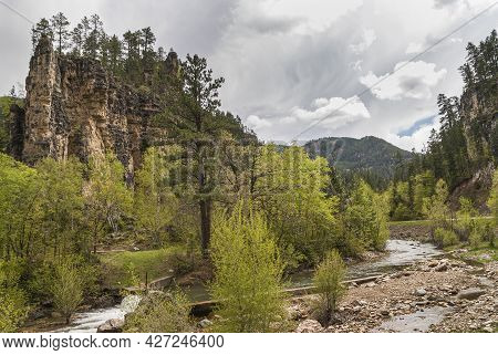 Black Hills National Forest, Sd, Usa - May 31, 2008: The Cliff Looking As Cathedral In Forest With W