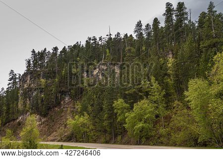 Black Hills National Forest, Sd, Usa - May 31, 2008: Densely Forested Mountain Flank And Cliffs Unde