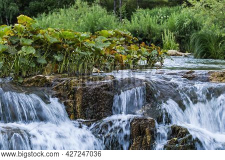 Suenginsky Cascade Waterfall On The Gold-bearing Sueng River. Maslyaninsky District Of The Novosibir