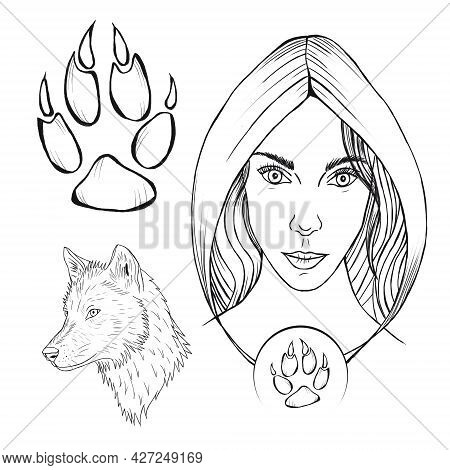Mystic Wolverine Girl, Wolf Paw With Claws, Wild Wolf, Girl In A Hood, Magic Forest Creature Illustr