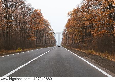 Autumn Road Landscape. View From The Car