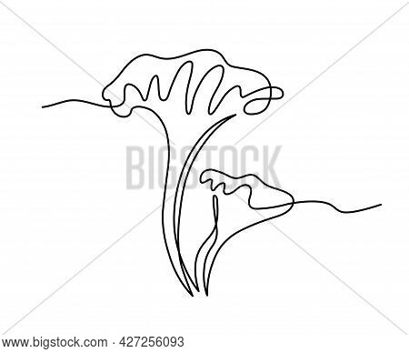 Forest Edible Mushroom,  Decorative Chanterelle, Delicious Food, Vector Illustration With Black Cont
