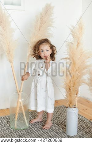 Cute Girl 3 Year Old Posing In Studio. Portrait Of Her She Nice-looking Attractive Lovely Sweet Curi