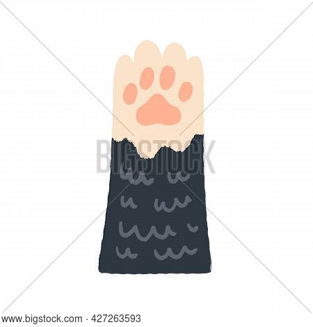 Cute Cat Paw With Soft Pads In Doodle Style. Adorable Raised Kitten Leg. Charming Feline Animal Foot