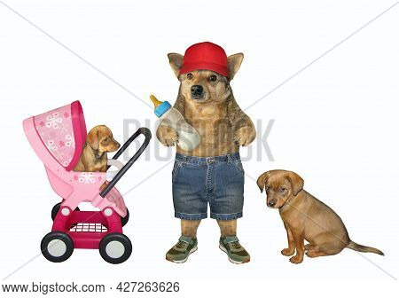A Dog Husky With A Bottle Of Milk Is Near A Pink Stroller With Its Puppies. White Background. Isolat